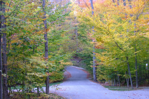 Annex Trail entry in the fall